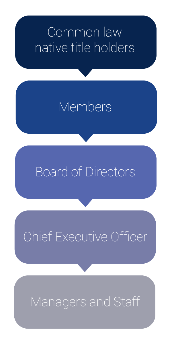 Flow chart showing PBC governance structure: common law native title holders, members, board of directors, chief executive officer, managers and staff